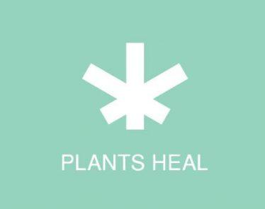 Wildflower Marijuana