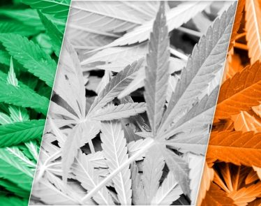 Ireland is Looking into Cannabis Legalization