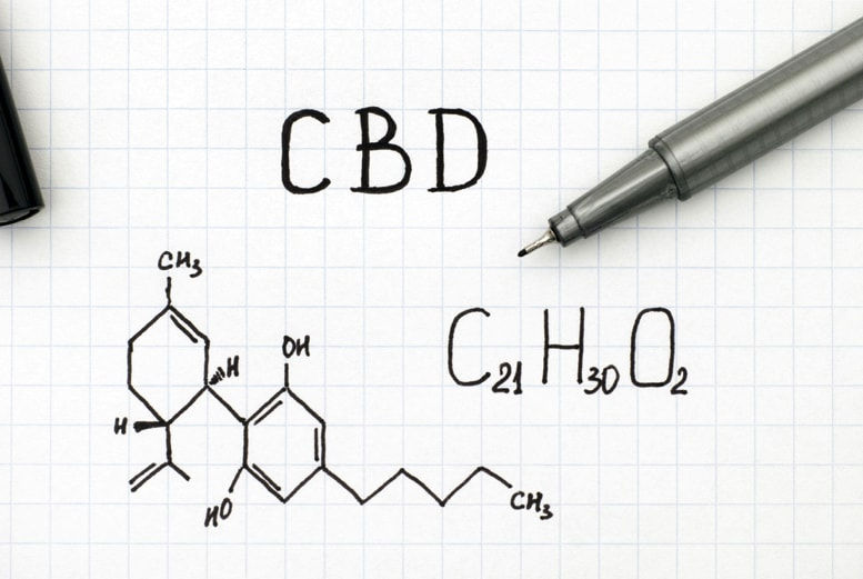 Cancer Treatment | New Study Shows CBD Improves Survival Rate 3x