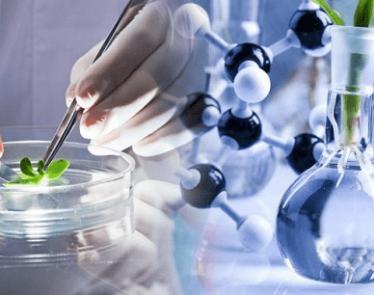 AXIM Biotechnologies stock