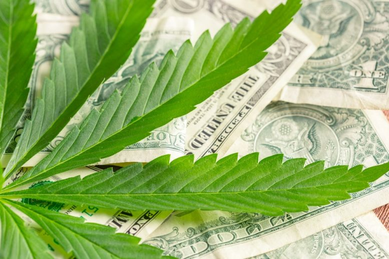 cannabis penny stocks to watch