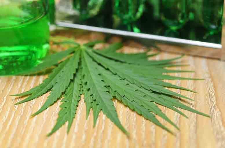 Teenage Cannabis