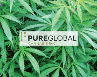 Pure Global Cannabis Inc.