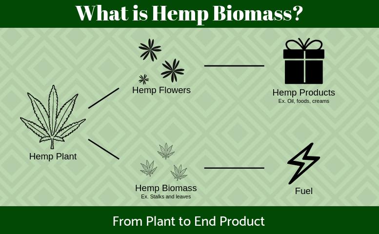 what is hemp biomass