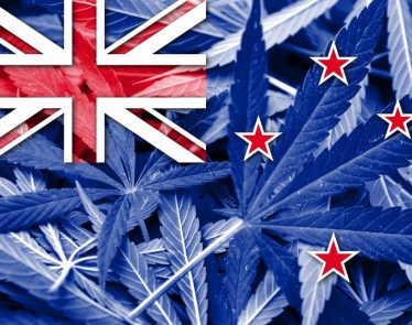 New Zealand cannabis