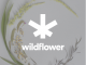 Wildflower Brands Inc