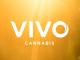 Vivo Cannabis