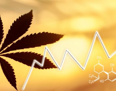 CannaOne Technologies CBD Marketplace