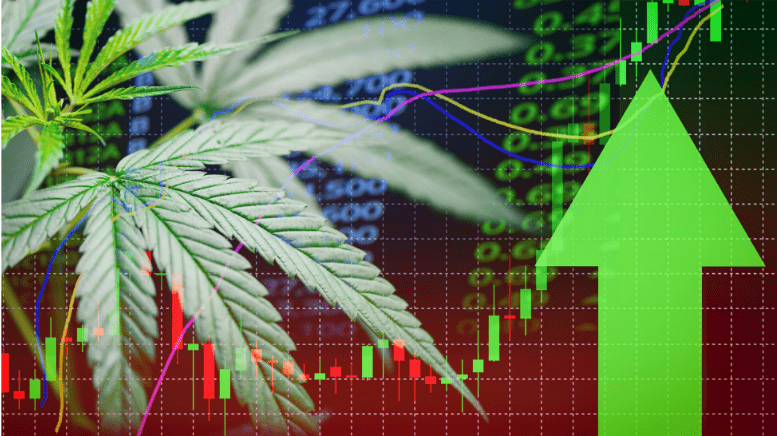 Cannabis Stocks Set To Thrive In Europe Top Three Predictions
