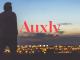 Auxly stock