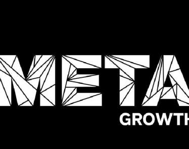 Meta Growth