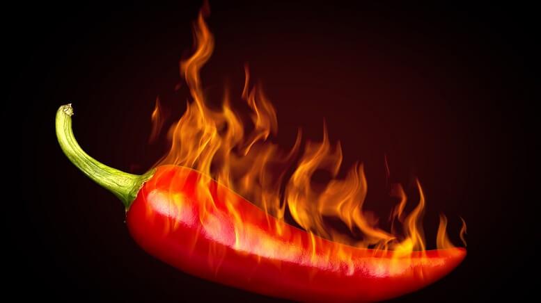 hot pot stocks